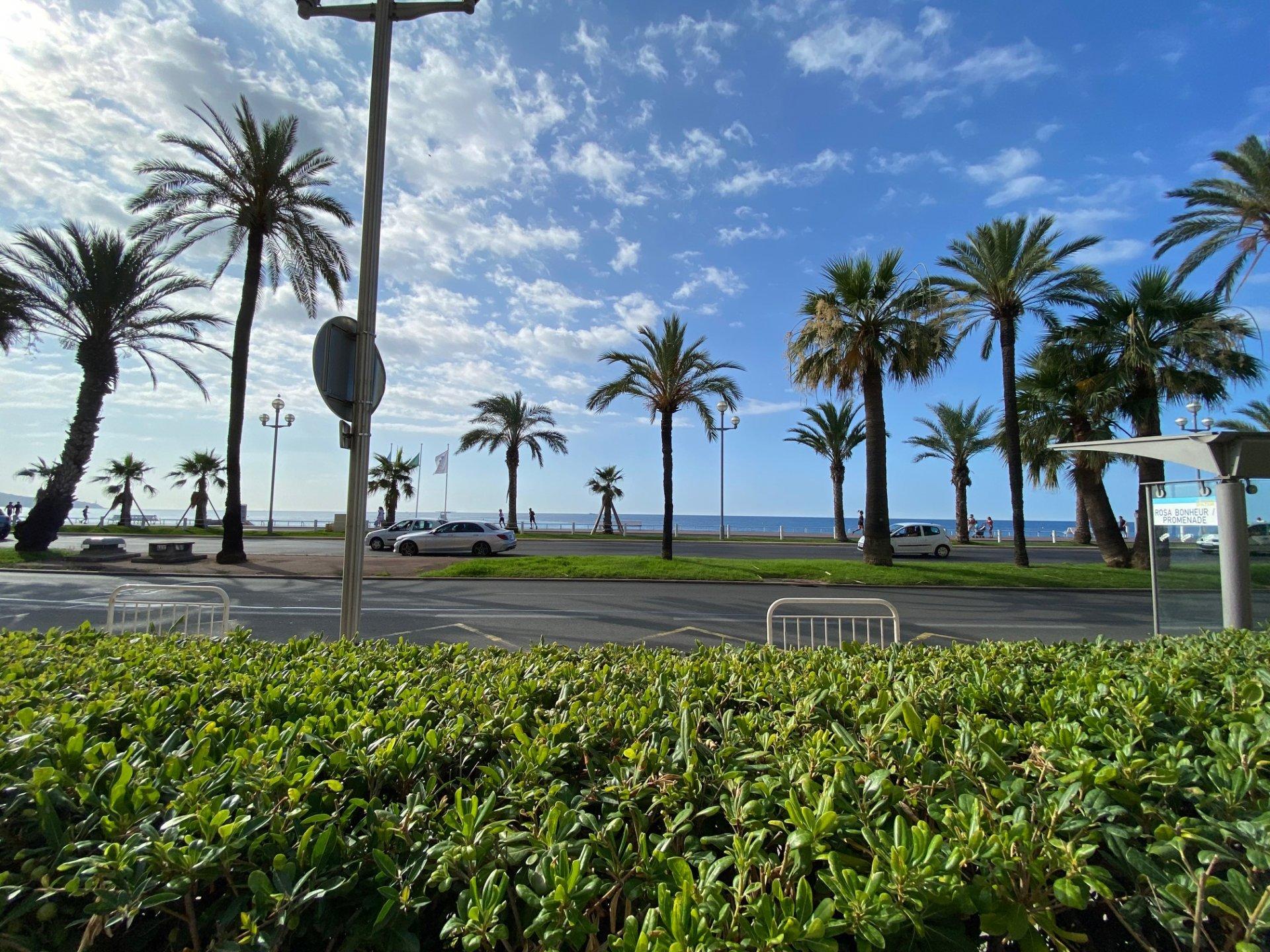 PROMENADE DES ANGLAIS, 3 pièces de 65 m² avec jardin et vue mer