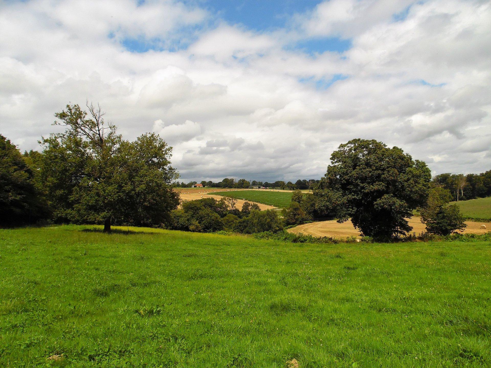 Mooie fermette met ruim 1 ha grond te koop in de Creuse.