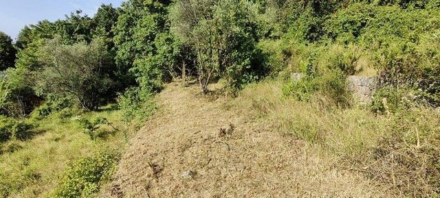 Magnificent building plot with panoramic views to the sea