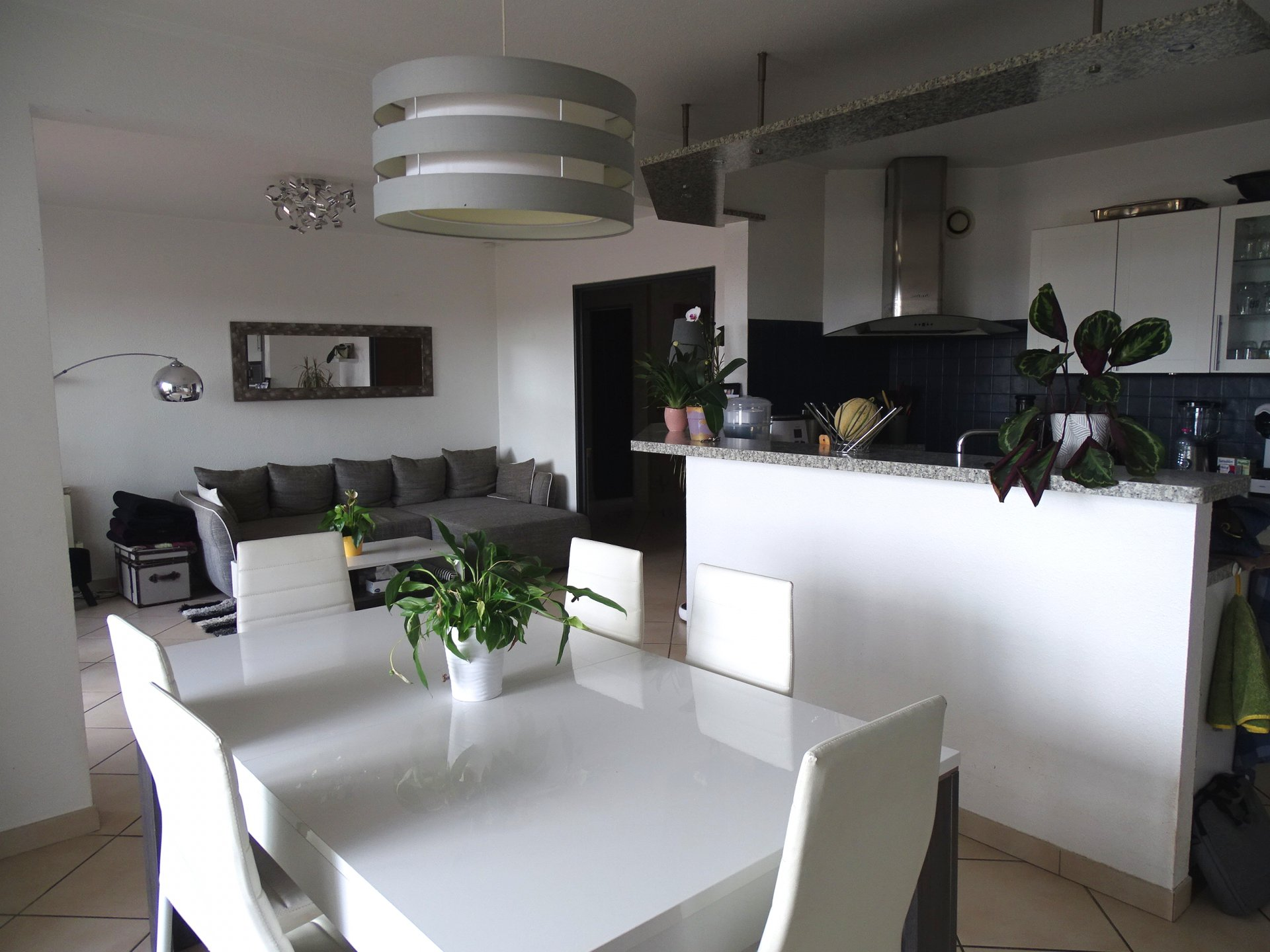 Venez absolument visiter cet appartement de plus de 100 m2, offrant un très grand hall, une pièce de vie de 35 m2 environ, lumineuse, fonctionnelle avec sa cuisine aménagée et équipée. Un accès direct à la terrasse que vous pourrez apprécier toute l?année avec ses menuiseries récemment changées. Vous jouirez aussi de trois chambres, dont une avec espace dressing. Une belle salle d?eau récemment refaite, avec douche à l?Italienne. Appartement vendu avec un garage et une cave. Idéalement situé, à quelques pas de toutes les commodités. Bien soumis au régime de la copropriété. 18 lots. Charges courantes trimestrielles de 432 ?. Honoraires à la charge du vendeur.
