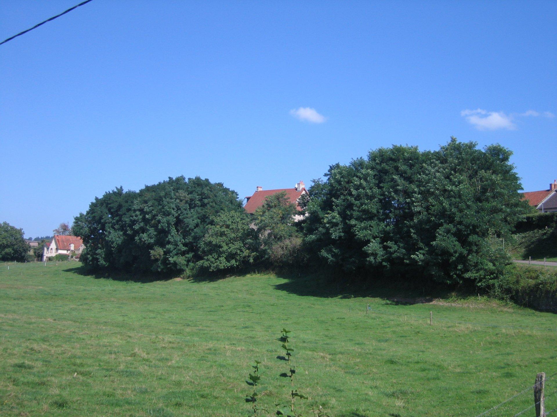 12e eeuws kasteel - Bourgogne VERKOCHT