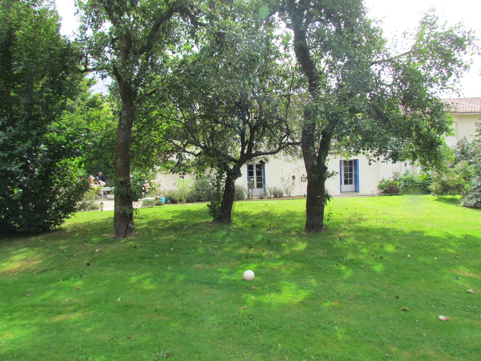 near  Sauzé Vaussais