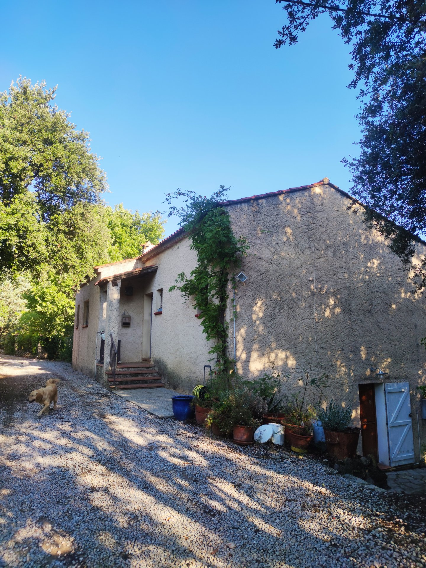 House walking distance to Cotignac