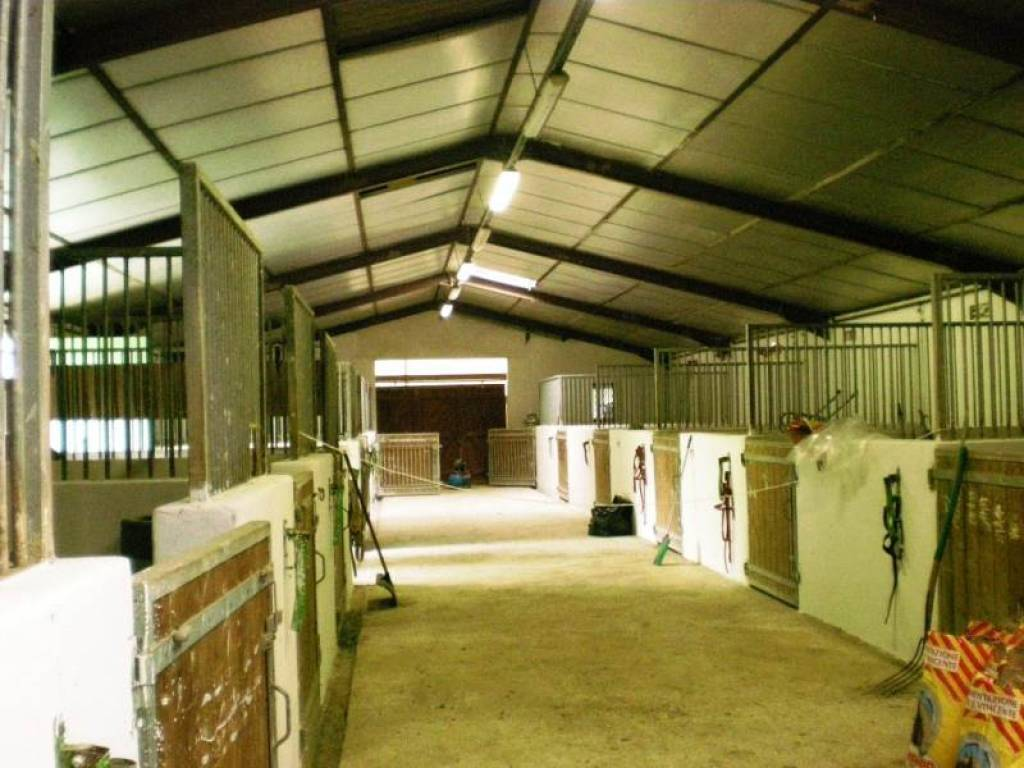 PROPERTY WITH HARAS IDEAL FOR HORSES