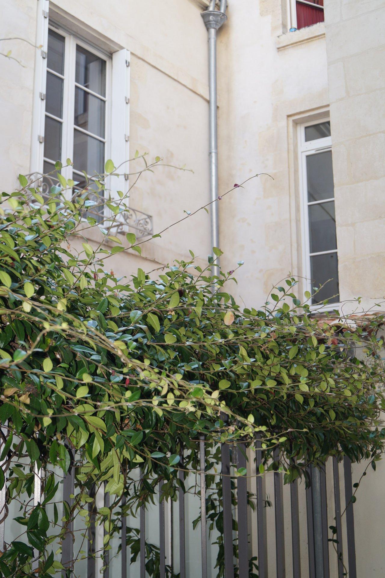 Vente Appartement - La Rochelle Centre Ville