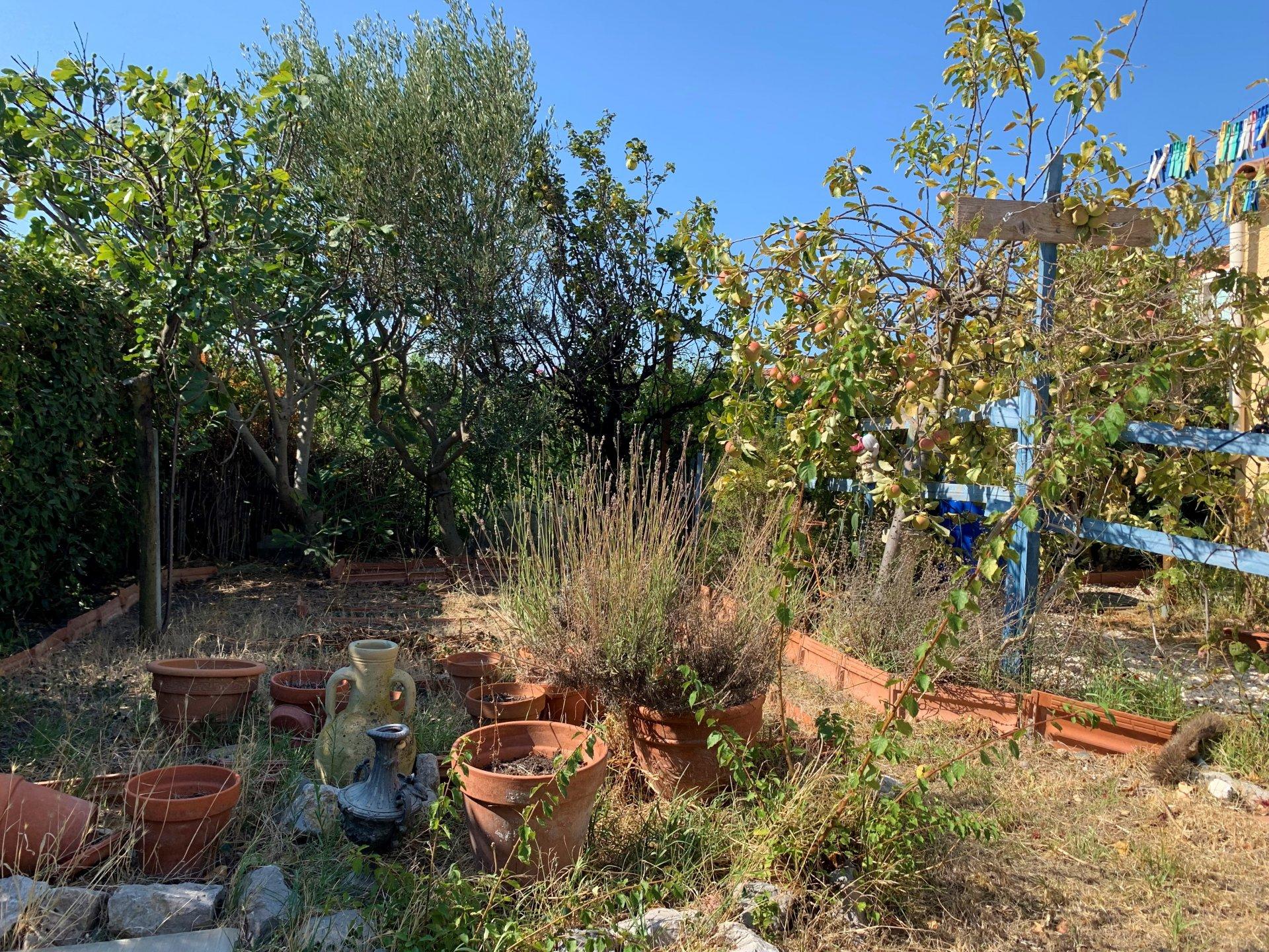 Joli Pavillon avec jardin