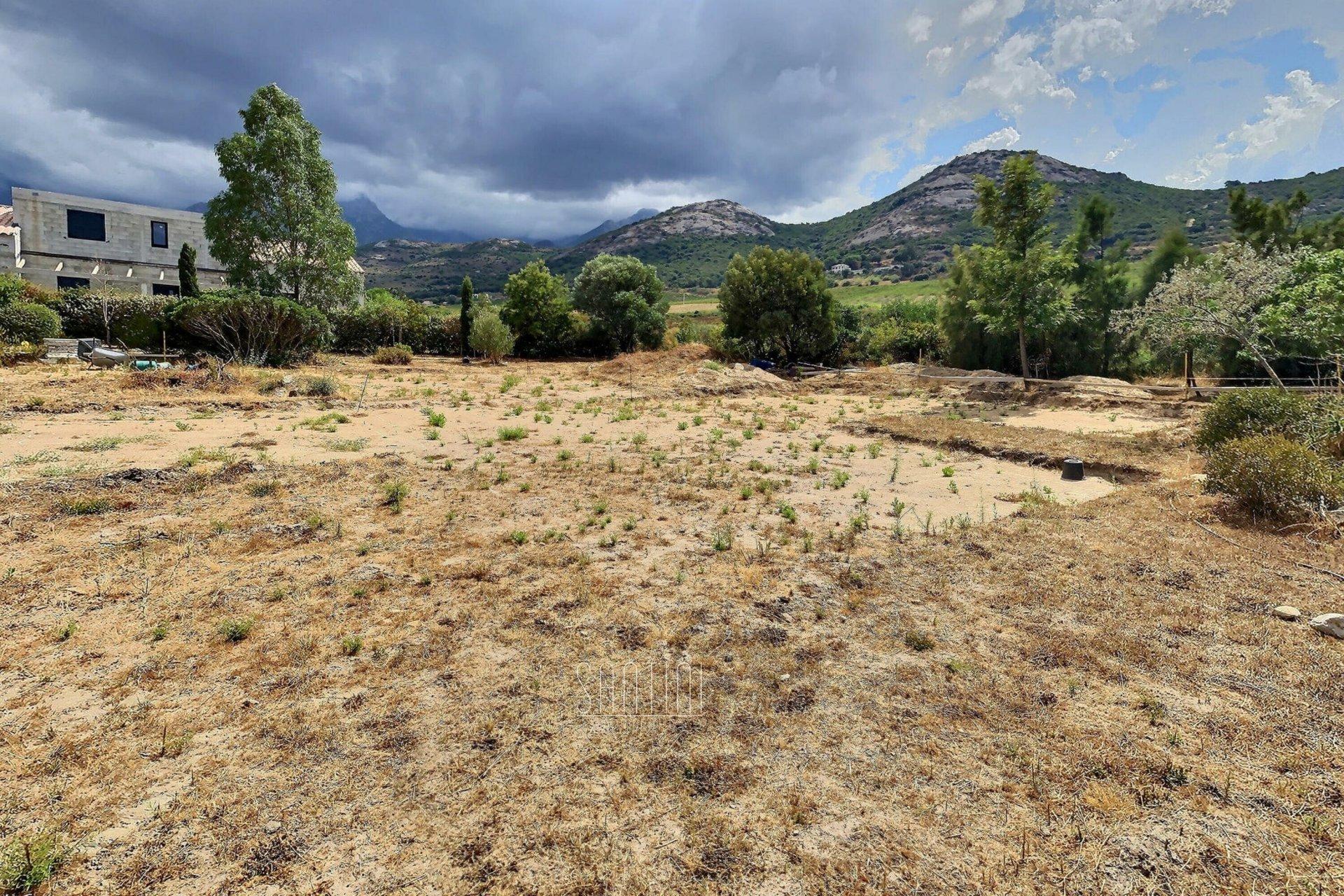Terrain constructible - Plaine de Calenzana