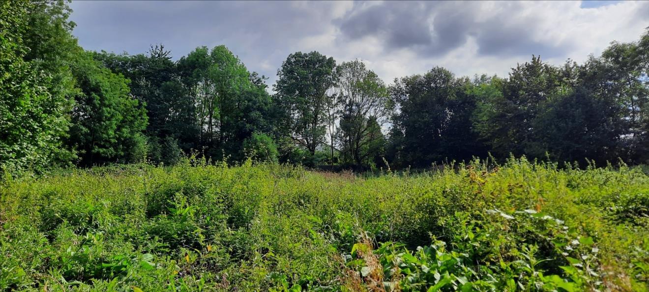 Sale Plot of land - Templeuve-en-Pévèle