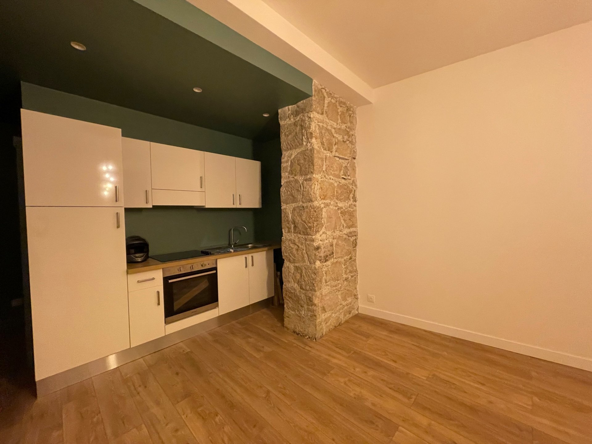 NICE Riquier - 1 Bdr fully renovated