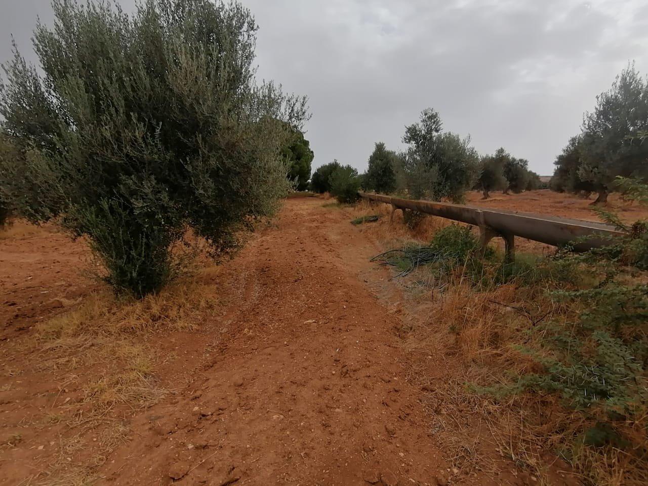 Vente d'une ferme sur la route de Tborba