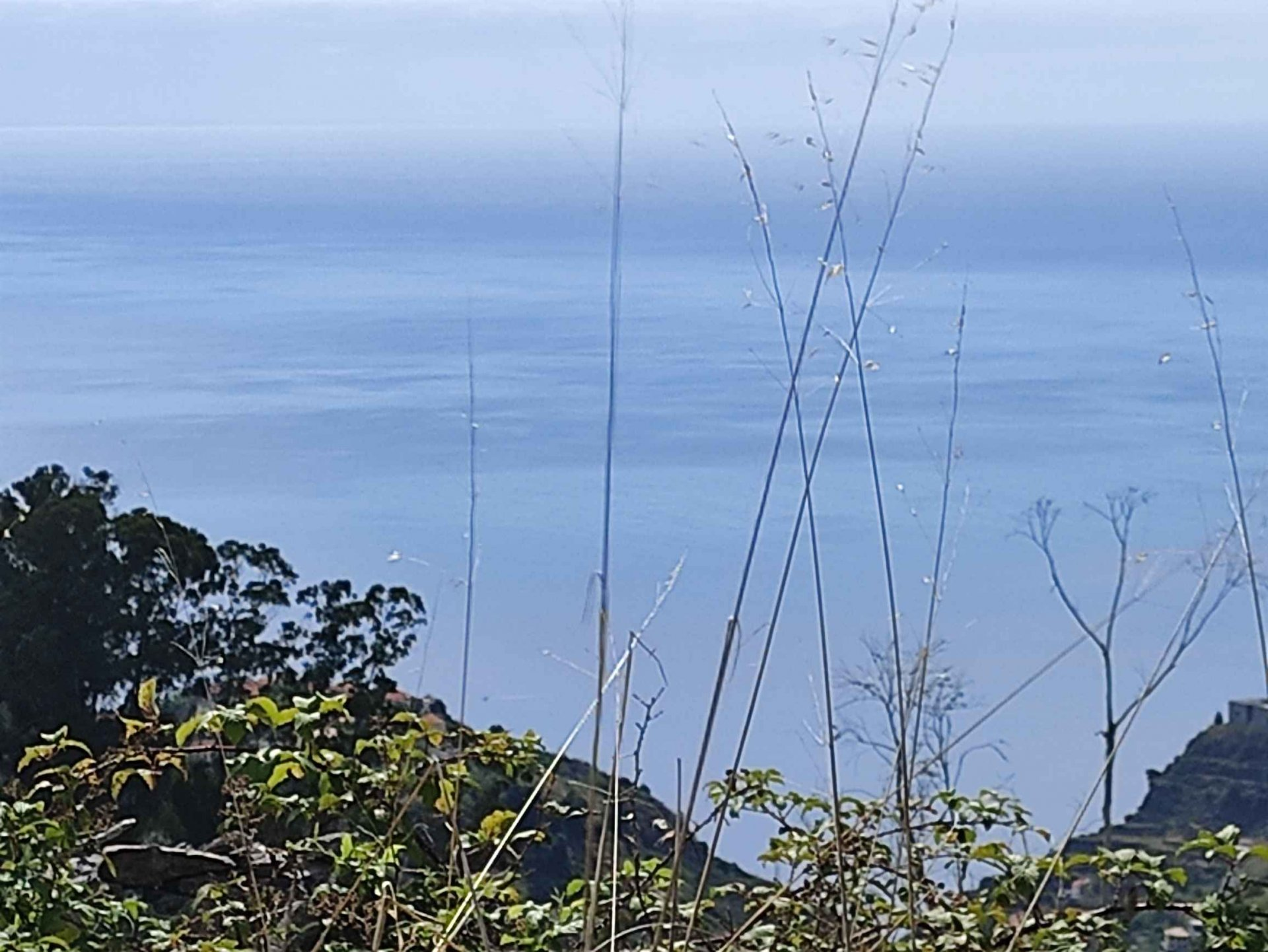 Joli petit terrain constructible avec vue sur la mer et les montagnes.
