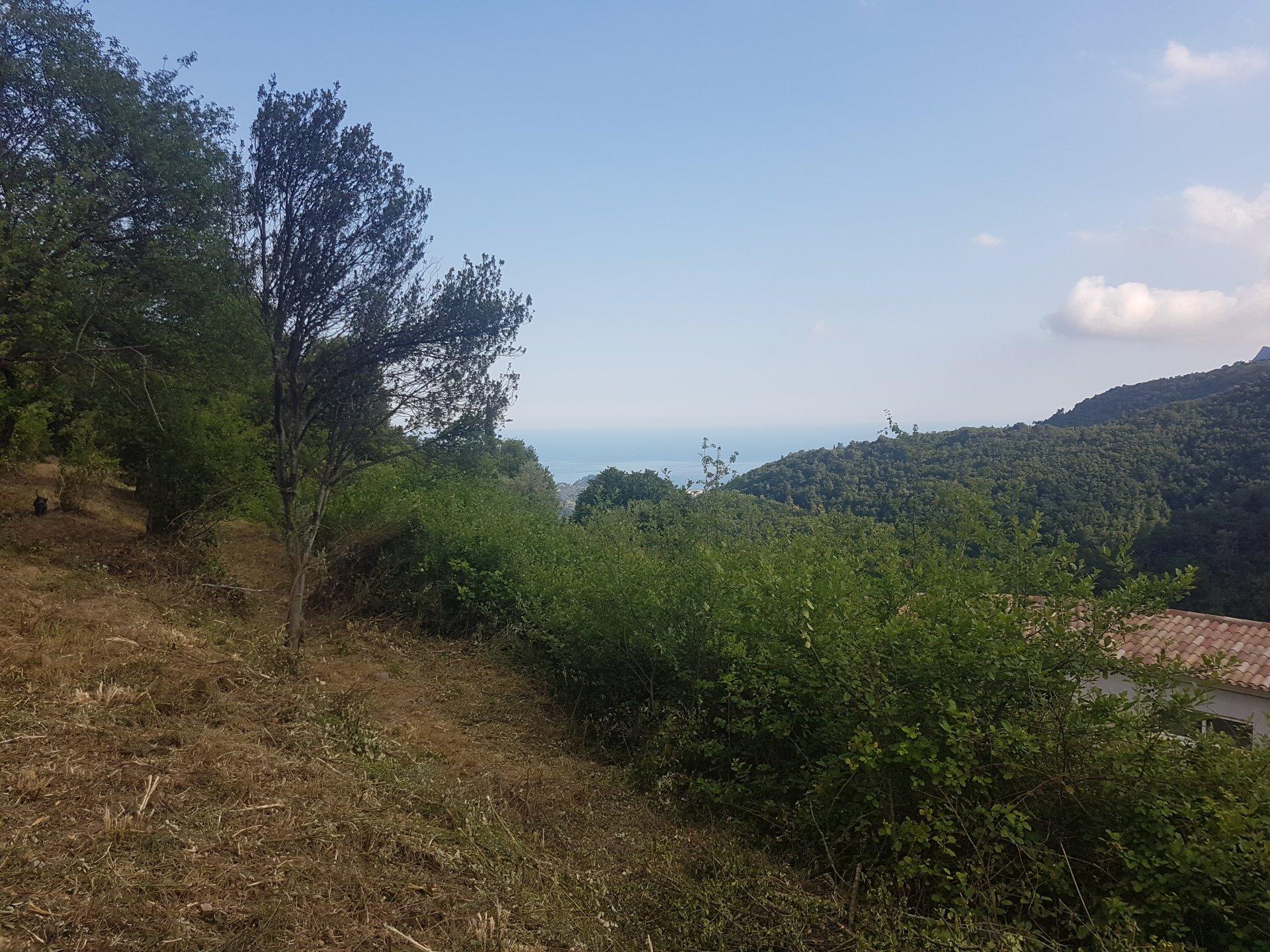 CASTILLON / Saint Antonin - Vaste terrain constructible vu mer / colline