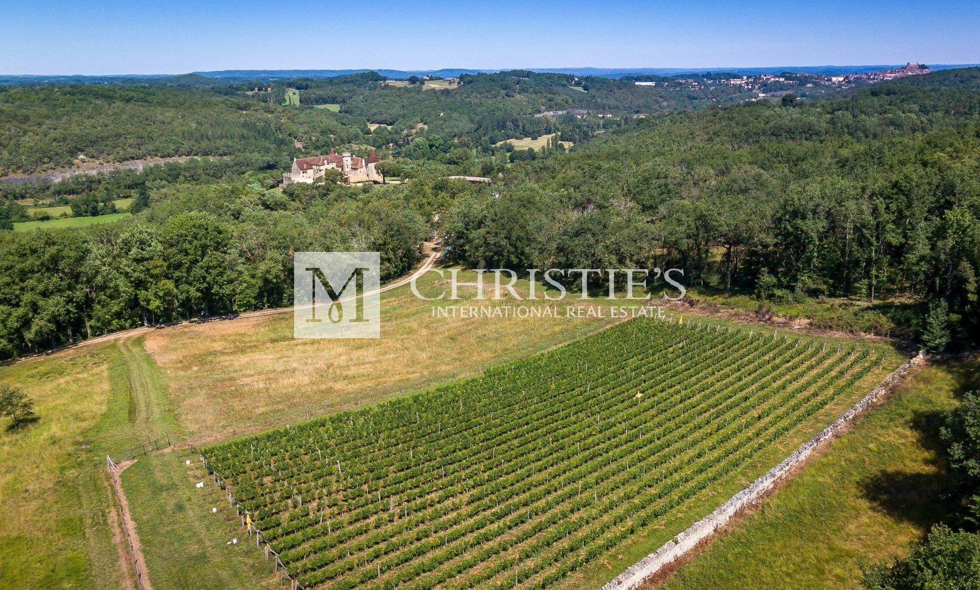 Ariel view of chateau and vineyard