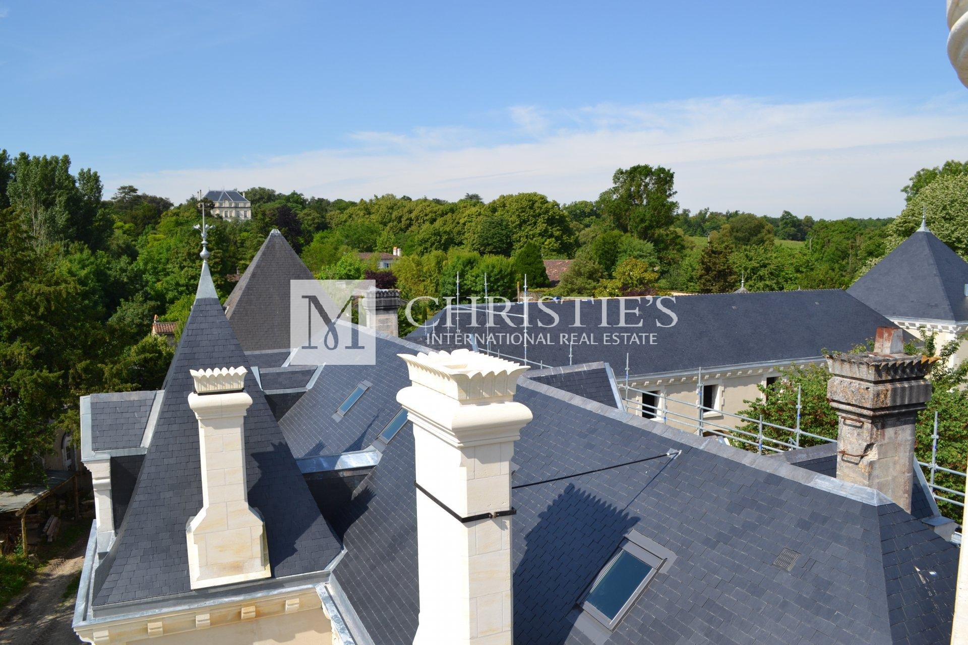 Impressive C19th Château near Cognac - ideal for hotel or hq