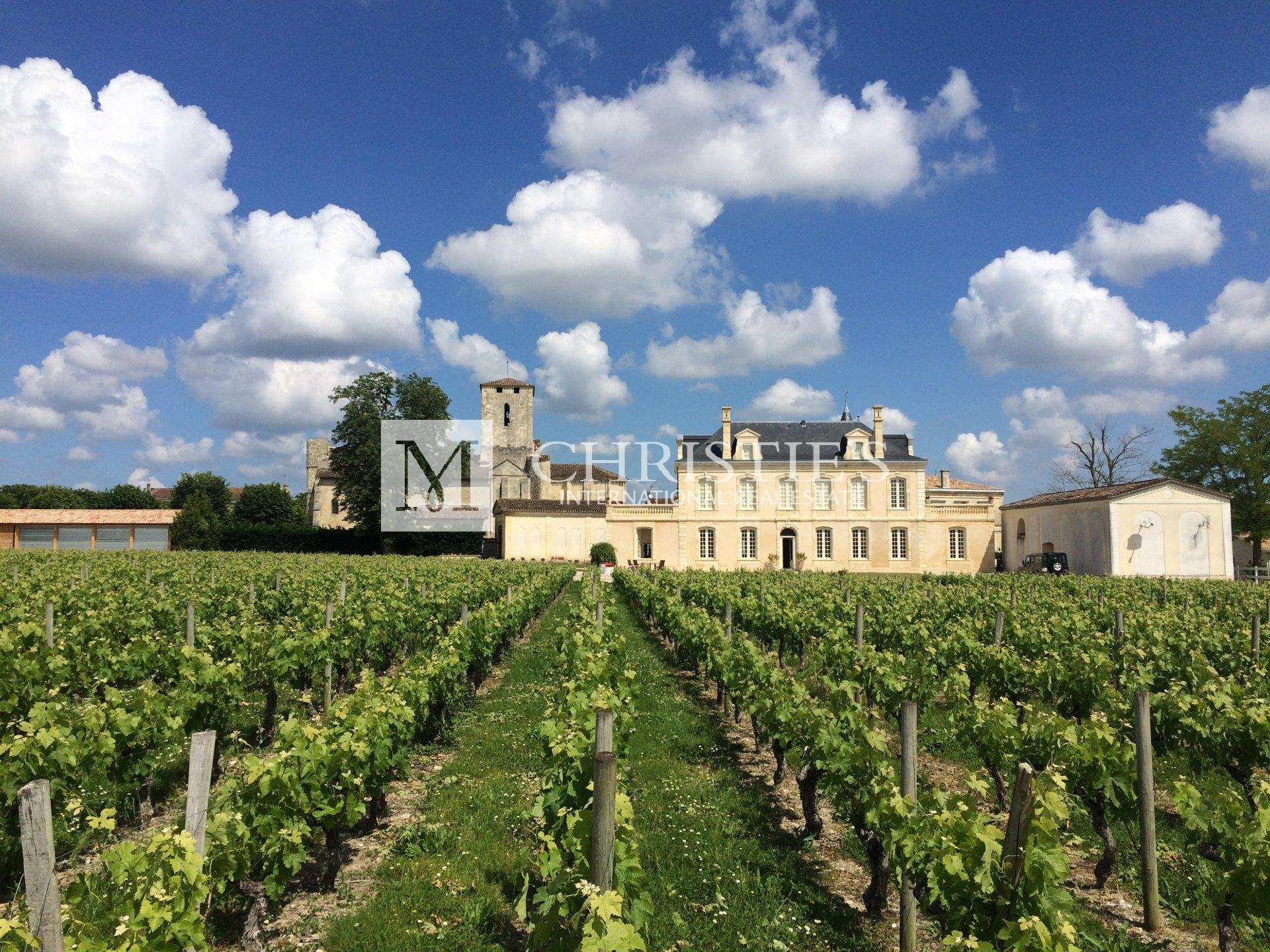 Beau Château à vendre avec 1 ha en AOC Médoc