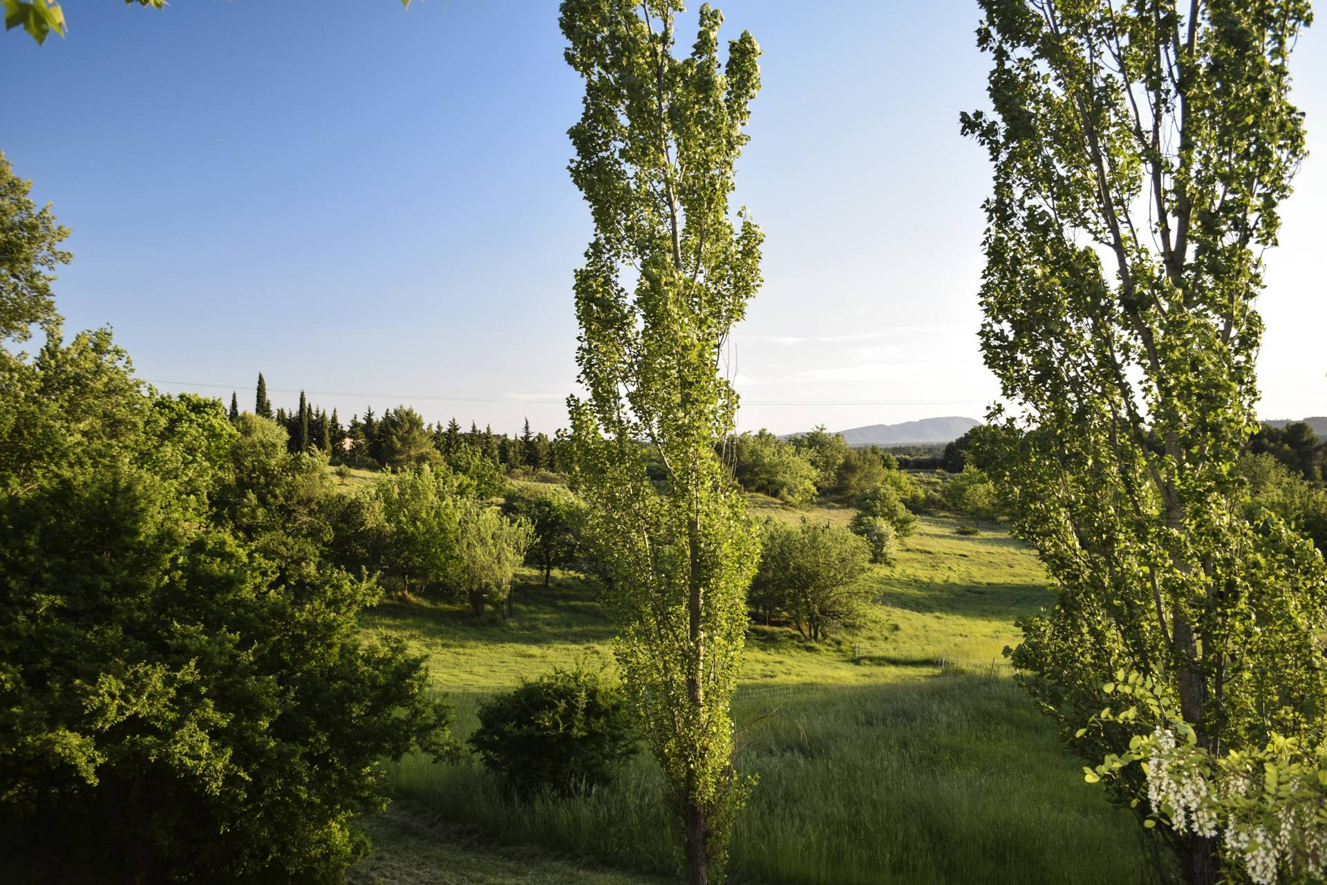 fields around 4 renovated country house on 8 ha, swimming pool, caretaker's house, aups var, provence