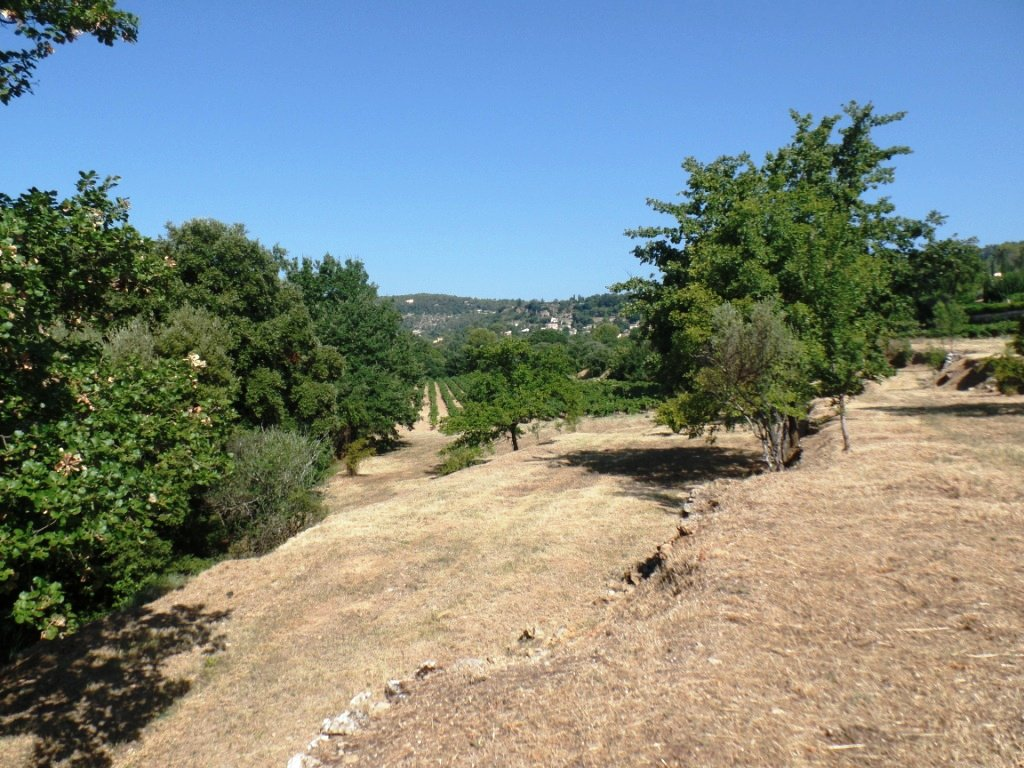 Sale Building land - Cotignac