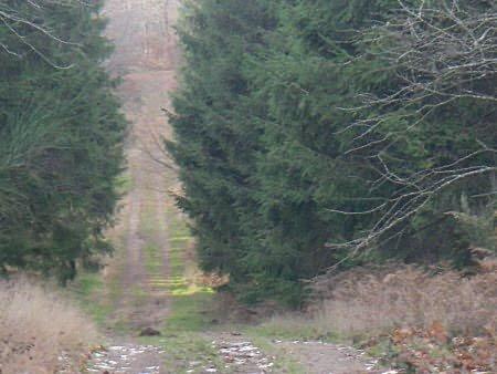 Situé dans le parc Régional du Haut Languedoc