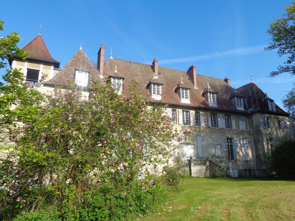 Sale Castle - Bourg-en-Bresse