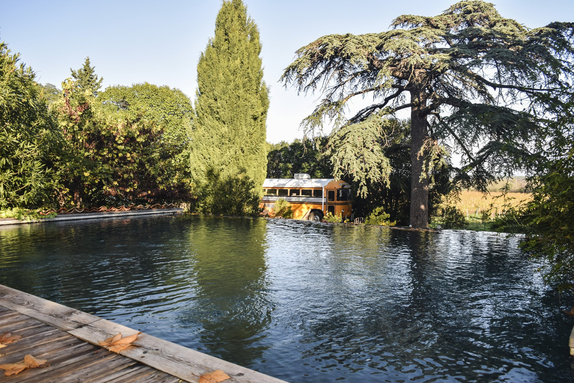 piscine Bastide 18 ième siècle 750 m², sur 2 ha chambres d'hôtes, le luc, var, provence