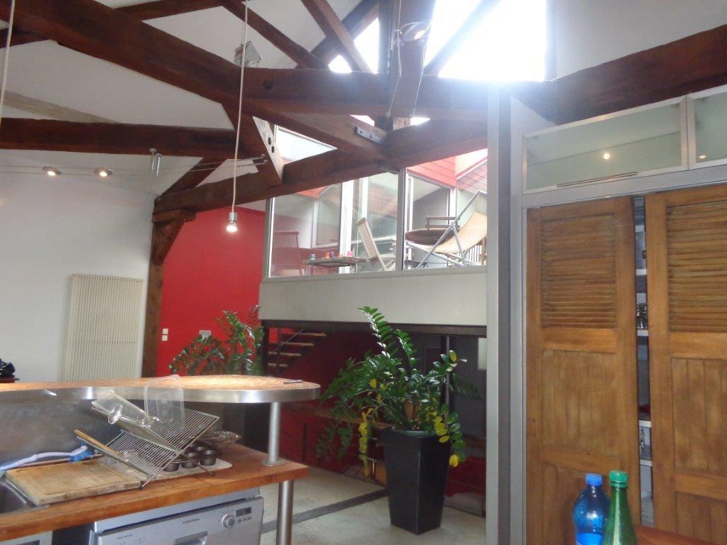 Lyon loft en triplex avec terrasse for Loft terrasse
