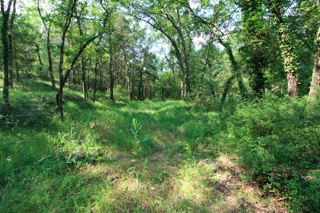 Sale Not constructible land - Fayence