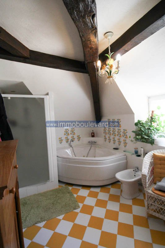 Old water mill, completely renovated with 3 gîtes