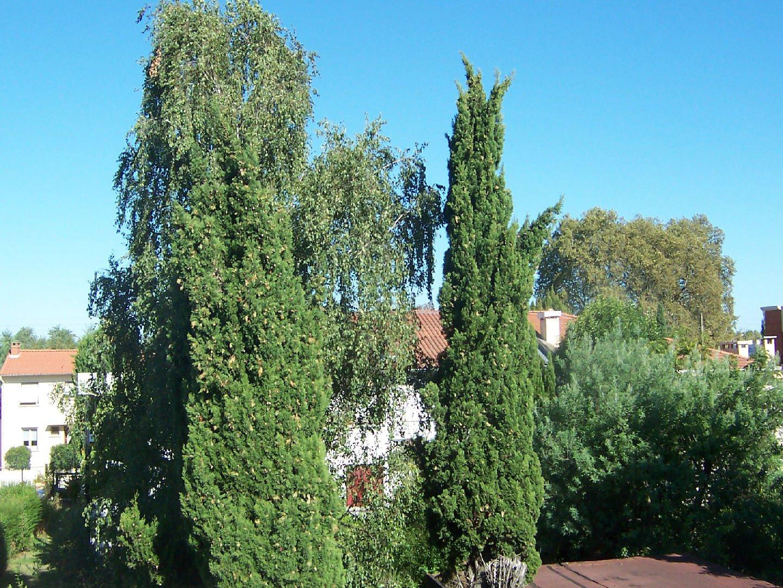 Location Appartement - Toulouse Rangueil
