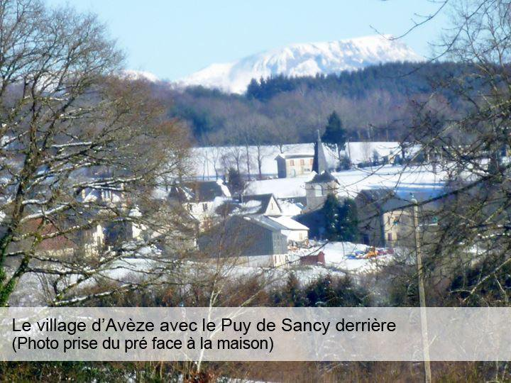 Vente Chalet - Aveze